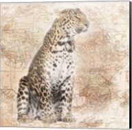 African Animals - Leopard Fine-Art Print
