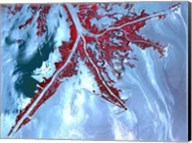 False Color Satellite View of the Very tip of the Mississippi River Delta Fine-Art Print