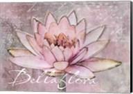 Lotus Bellaflora Fine-Art Print
