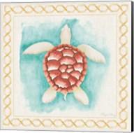 Coastal Mist Sea Turtle Border Turquoise Fine-Art Print