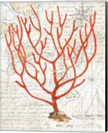 Textured Coral I Fine-Art Print