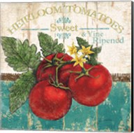 Heirloom Tomatoes Fine-Art Print