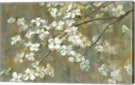 Dogwood in Spring Fine-Art Print