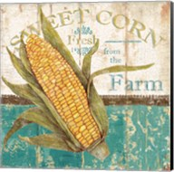 Sweet Corn Fine-Art Print
