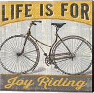 Joy Ride I Fine-Art Print