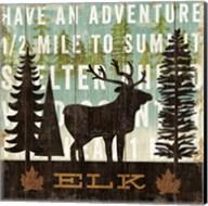 Simple Living Elk Fine-Art Print