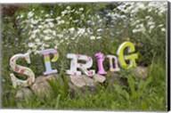Spring Sign Fine-Art Print