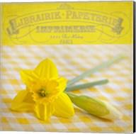 Yellow Spring Fine-Art Print