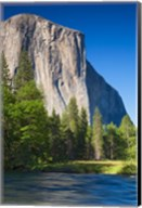 El Capitan and Merced River Yosemite NP, CA Fine-Art Print