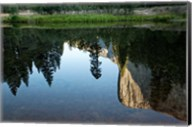 Reflection of El Capitan in Mercede River, Yosemite National Park, California - Horizontal Fine-Art Print