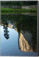 Reflection of El Capitan in Mercede River, Yosemite National Park, California - Vertical Fine-Art Print