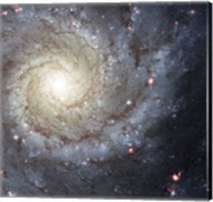 Spiral Galaxy M74 Fine-Art Print