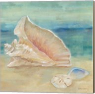 Horizon Shells III Fine-Art Print