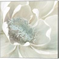 Winter Blooms I Fine-Art Print