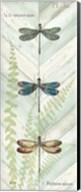 Dragonfly Botanical Panels I Fine-Art Print