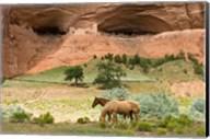 Canyon De Chelly Fine-Art Print