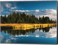Trees reflecting in Snake River, Grand Teton National Park, Wyoming Fine-Art Print