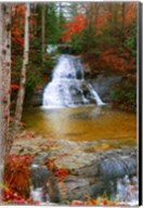Water Fall Fine-Art Print