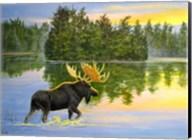 Wilderness Lake Moose Fine-Art Print