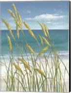 Summer Breeze I Fine-Art Print
