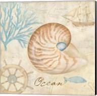 Nautical Shells III Fine-Art Print