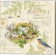 Nature Trail I Fine-Art Print