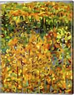 Towards Autumn Fine-Art Print