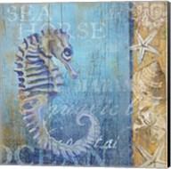 Sea Horse and Sea Fine-Art Print