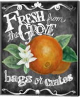 Fresh from the Grove Fine-Art Print