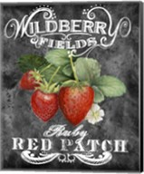 Wildberry Fields Fine-Art Print