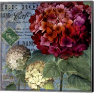 Rouge From the Garden I Fine-Art Print