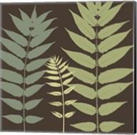 Field Botanical Fine-Art Print