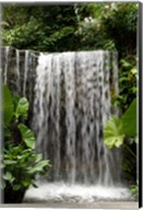 Singapore, National Orchid Garden, Waterfall Fine-Art Print