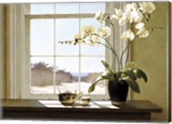 Orchids In The Window 2 Fine-Art Print