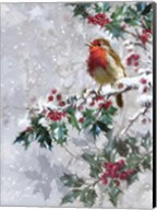 Robin On Holly 2 Fine-Art Print