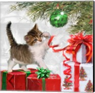 Kitten And Present Fine-Art Print