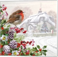 Winter Robin Fine-Art Print