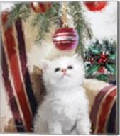 Kitten Chair Fine-Art Print