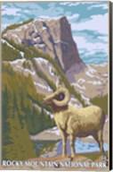 Rocky Mountain Park Ram Fine-Art Print