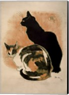 Two Cats Fine-Art Print