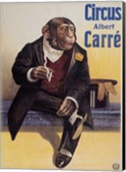 Carre Circus Chimp Fine-Art Print