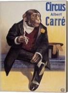 Carre Circus Chimp Fine-Art Print