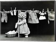 Kitty Laundry Fine-Art Print