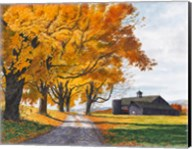 Golden Maples Fine-Art Print