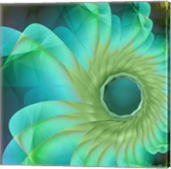 Aqua in Bloom Fine-Art Print