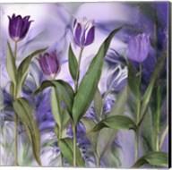 Purple Dream II Fine-Art Print