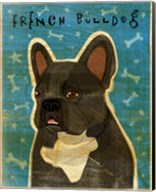 French French Bulldog - Black Brindle and White Fine-Art Print