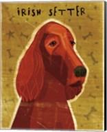 Irish Setter Fine-Art Print