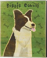 Border Collie Fine-Art Print