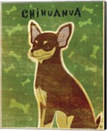 Chihuahua (chocolate and tan) Fine-Art Print